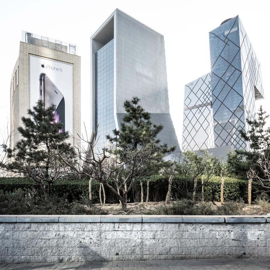 UN_Beijing_IbaiRigby1