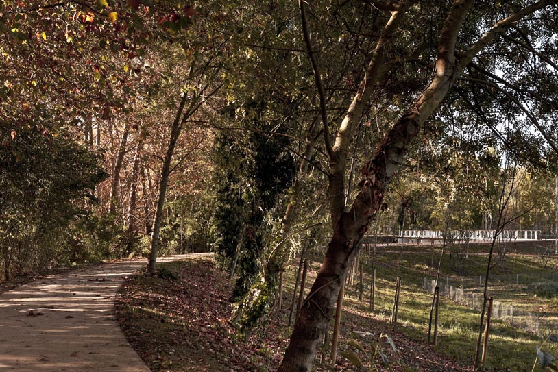 aldayjover-path between river and orchards