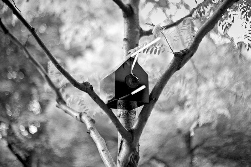 BirdHouse-3_gs