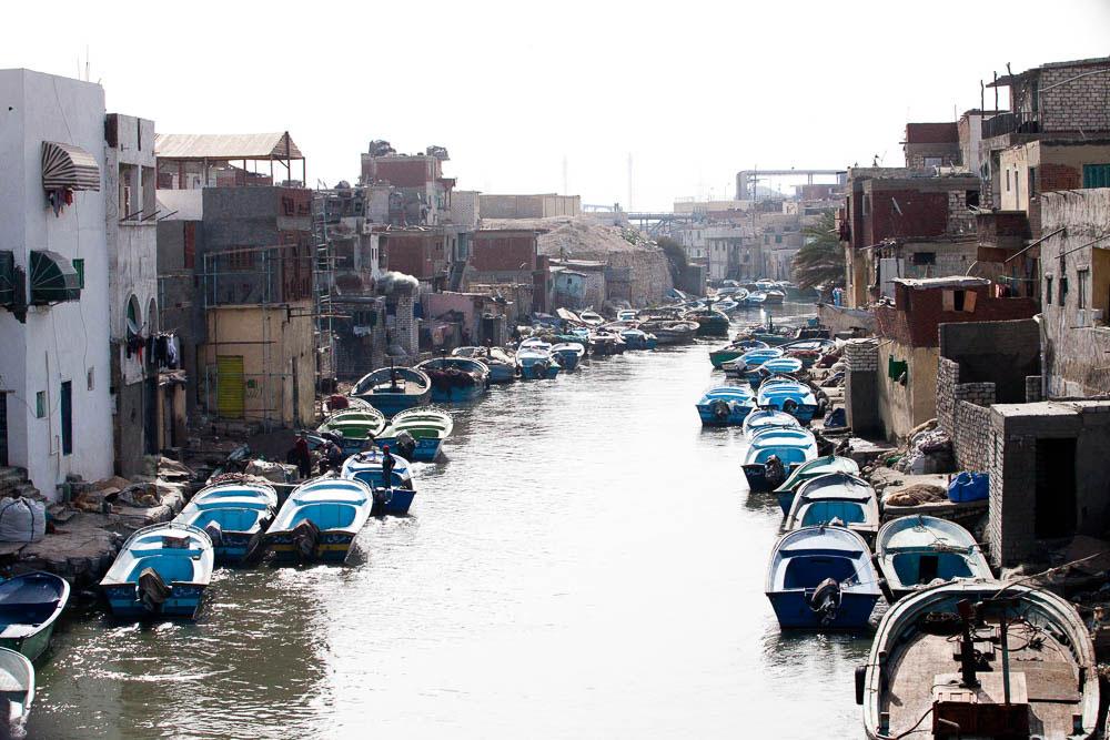 Alexandria-(16-of-57)