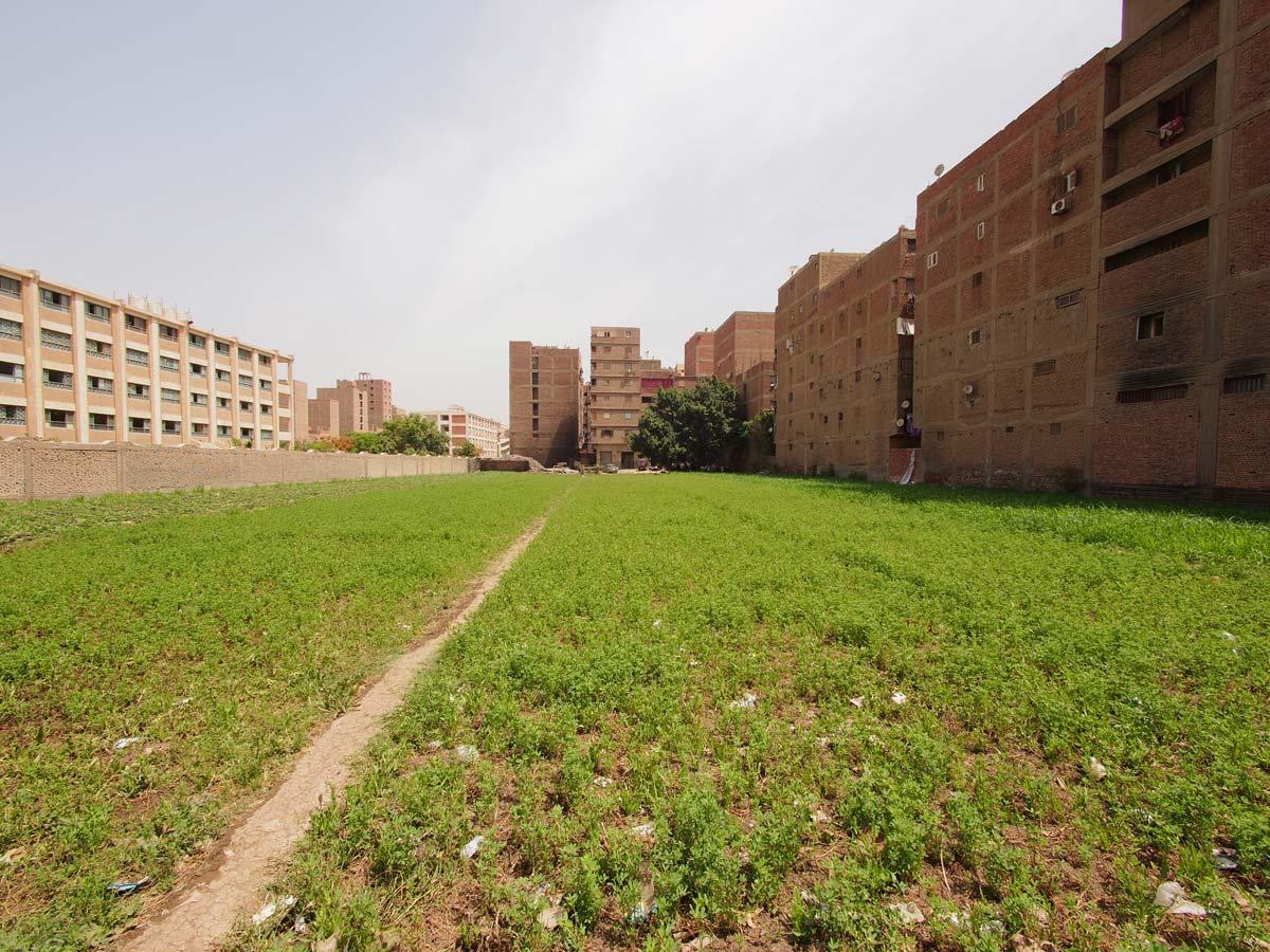 Receding_Rurality_Cairo_01_LB