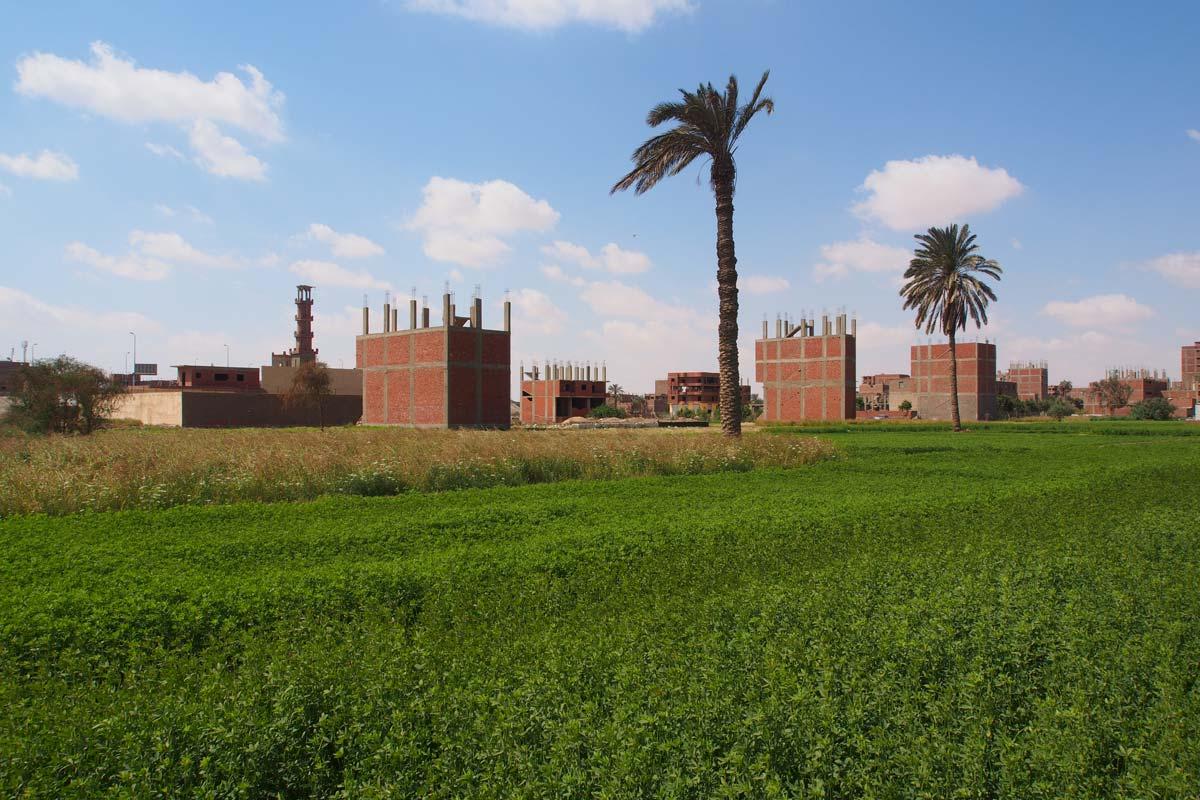 Receding_Rurality_Cairo_03_LB