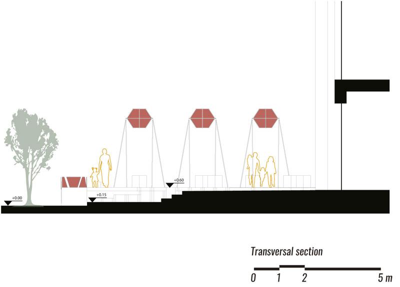 Transversal-section