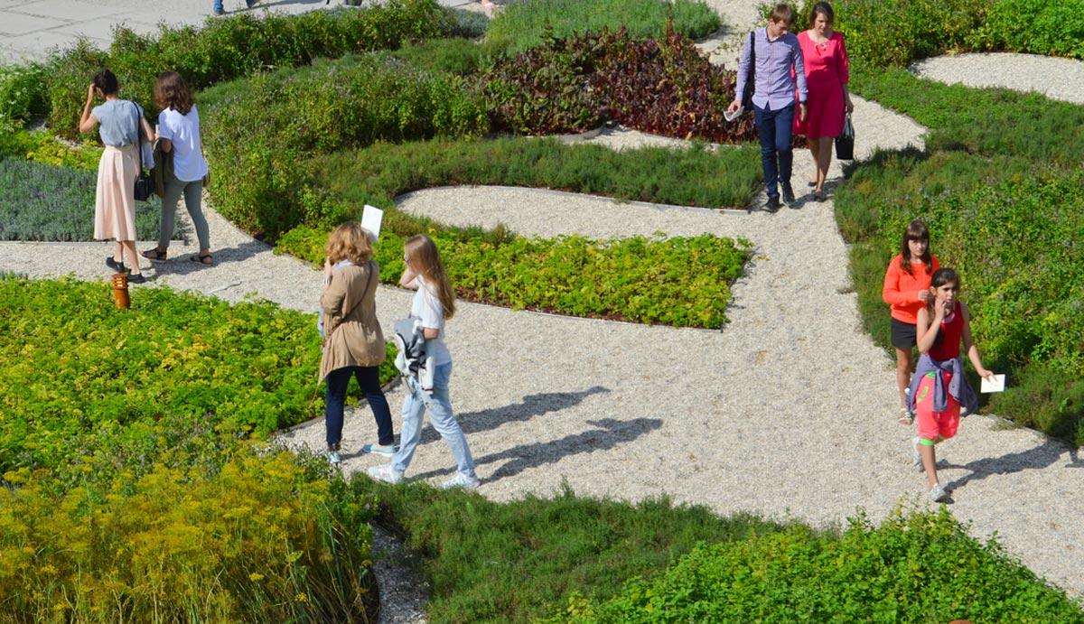 new-holland-island-herb-garden-west-8-10